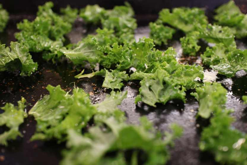 2013 0316 IMG_1009 Kale on making sheet