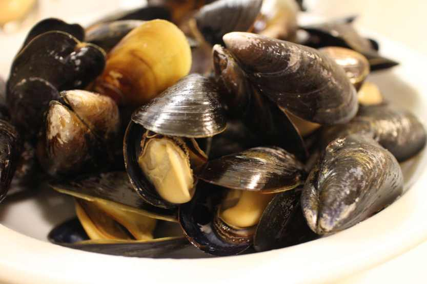 2013 0322 IMG_1040 Mussels
