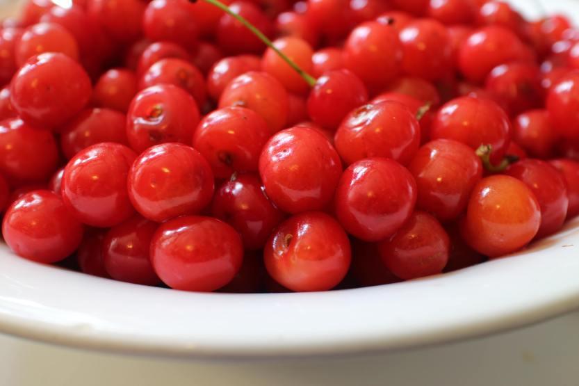 2013 0703 IMG_2045 Sout cherries in bowl