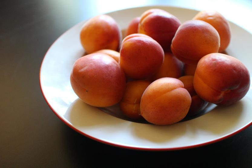 2013 0812 IMG_2452 Red jacket apricots