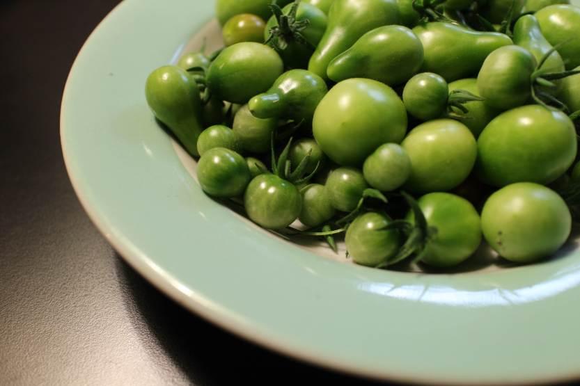 2013 0916 IMG_2928 green tomatoes