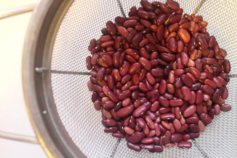 2015 0117 Rancho Gordo Sangre de Toro beans